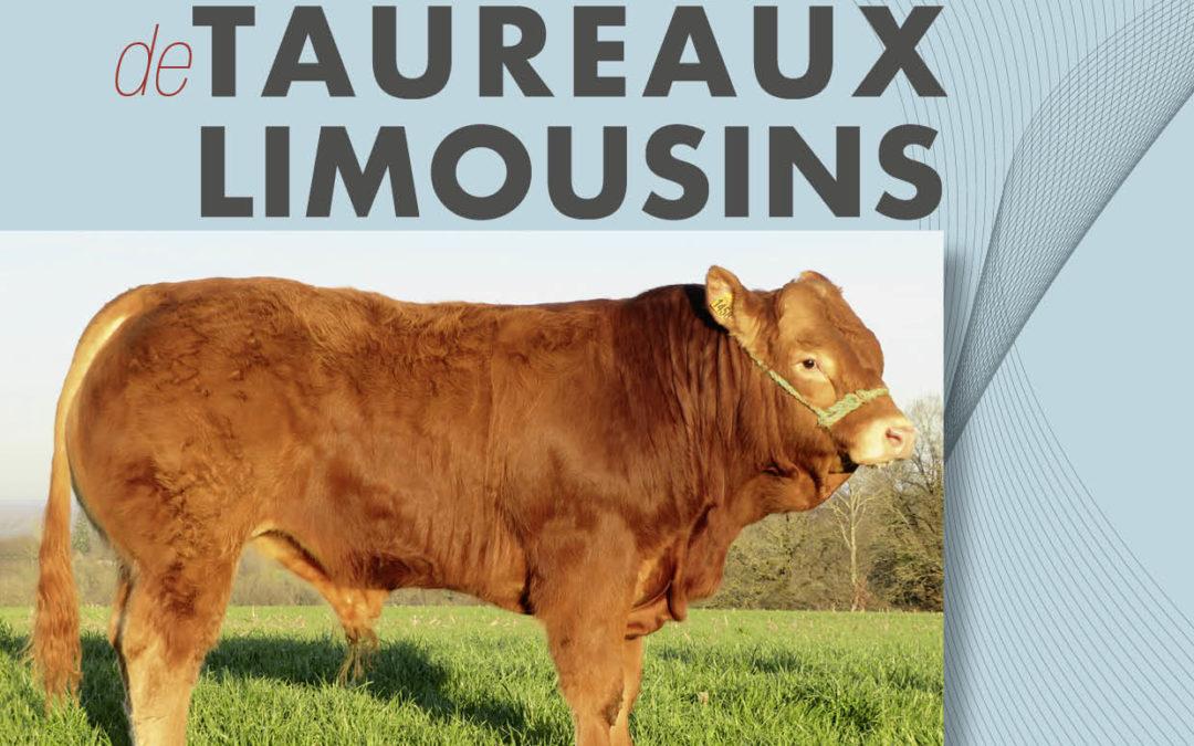 3 Avril 2019 : Vente de Taureaux Limousins à Meuzac